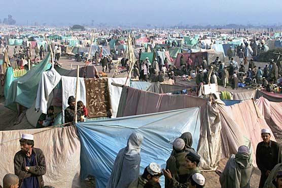 afghan-refugees